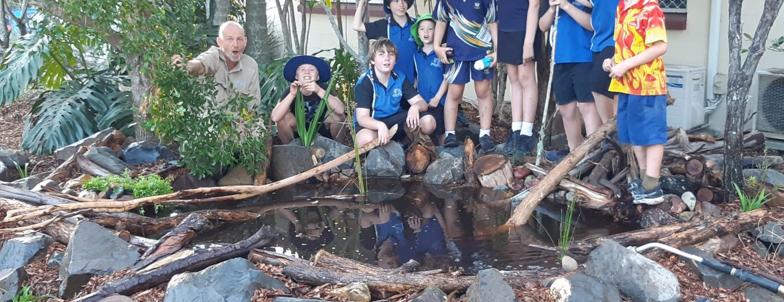 Junior Landcare Project: Hey Froggies – The Pond is Open!