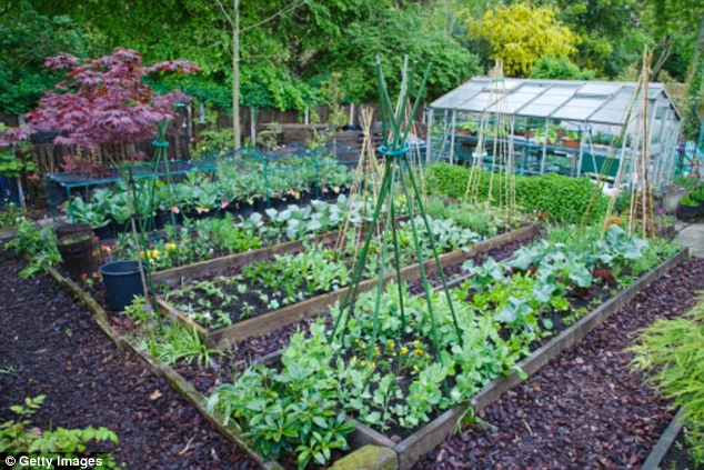 Permaculture Veggie Gardens & Compost Systems Workshop – 19th September 2020, 9:00am – 4:00pm