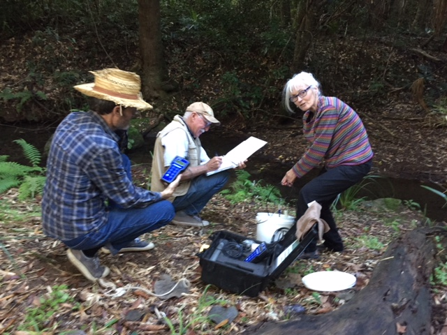 Success for Friends of 3 Mile Creek